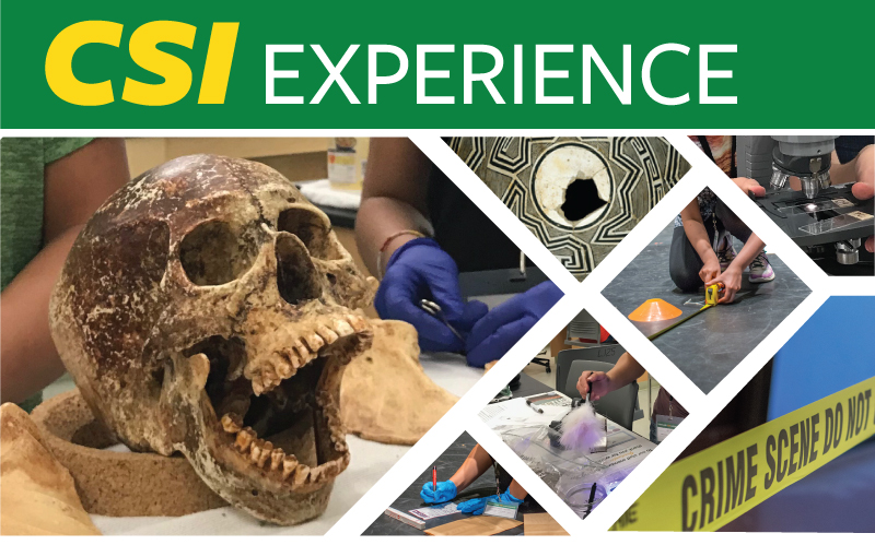 CSI experience summer camp