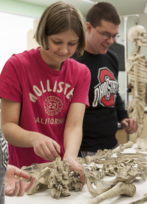 Forensic students studying bones